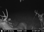 trail-camera-land-for-sale-wapello-county-iowa-28