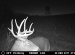 trail-camera-land-for-sale-wapello-county-iowa-38