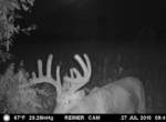 trail-camera-land-for-sale-wapello-county-iowa-50