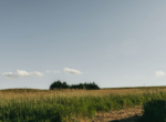 Lucas County Iowa Land For Sale (103)