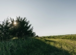 Lucas County Iowa Land For Sale (109)