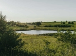 Lucas County Iowa Land For Sale (113)
