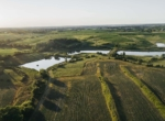 Lucas County Iowa Land For Sale (27)