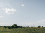 Lucas County Iowa Land For Sale (56)