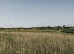 Lucas County Iowa Land For Sale (63)