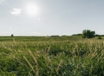 Lucas County Iowa Land For Sale (68)