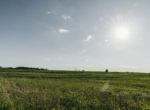 Lucas County Iowa Land For Sale (71)
