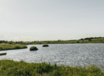 Lucas County Iowa Land For Sale (99)