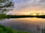 Clarke County Iowa_Land For Sale (13)
