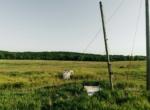 Land for Sale Clarke County Iowa-2