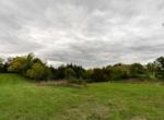 Land For Sale_Building Site_Dallas County Iowa_6 acres (14)