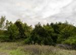 Land For Sale_Building Site_Dallas County Iowa_6 acres (19)